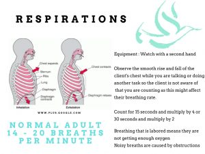 respirations